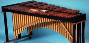 Instrumentos percusion cromatica
